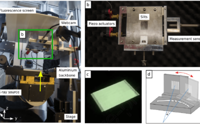 Xstrahl in Action: SARRP and XenX Enable Microbeam Radiation Therapy at a Small Animal Irradiator