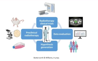 Reversing the Translational Research Paradigm in Preclinical Radiotherapy Studies
